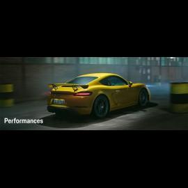 Porsche Broschüre 718 Cayman GT4 Parfaitement irrationnel 06/2019 in Französisch WSLN2001000330
